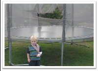 trampolines and homeowners insurance
